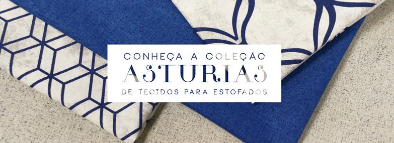 Banner Asturias
